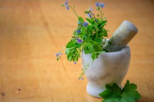 Herbal Medicines And Your Digestive System